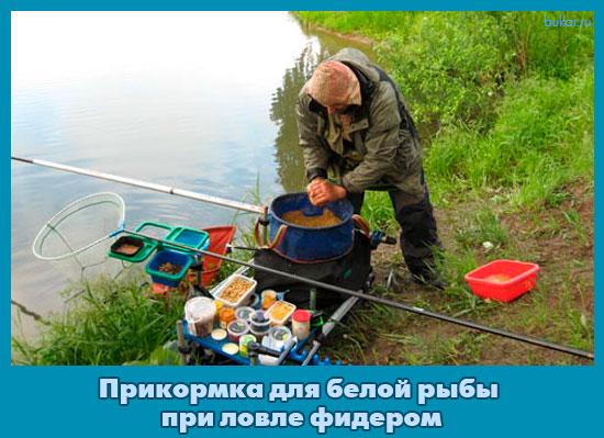 прикормочная программа при ловле карпа