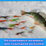 Незаменимые наживки для подледной рыбалки