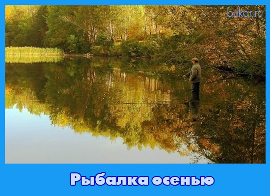 рыбалка осень 2015