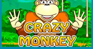 Лучшие автоматы в клубе Crazy Monkey